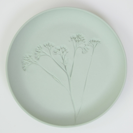 Plantenbord M - Groen 13