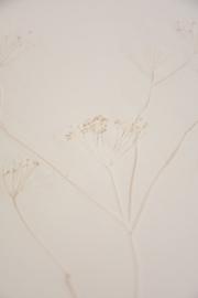 Plantenbord XL - Nude 02