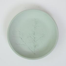 Plantenbord S - Groen 18