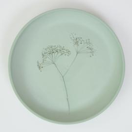 Plantenbord M - Groen 02