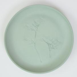 Plantenbord M - Groen 12