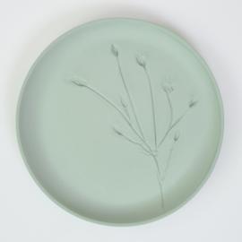 Plantenbord L - Groen 01