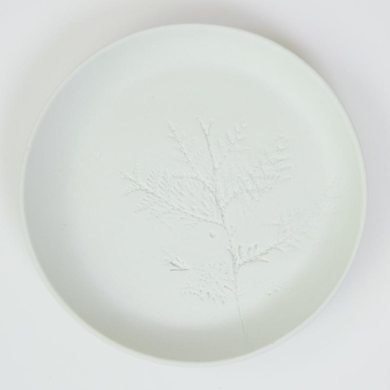 Plantenbord M - Mint 20