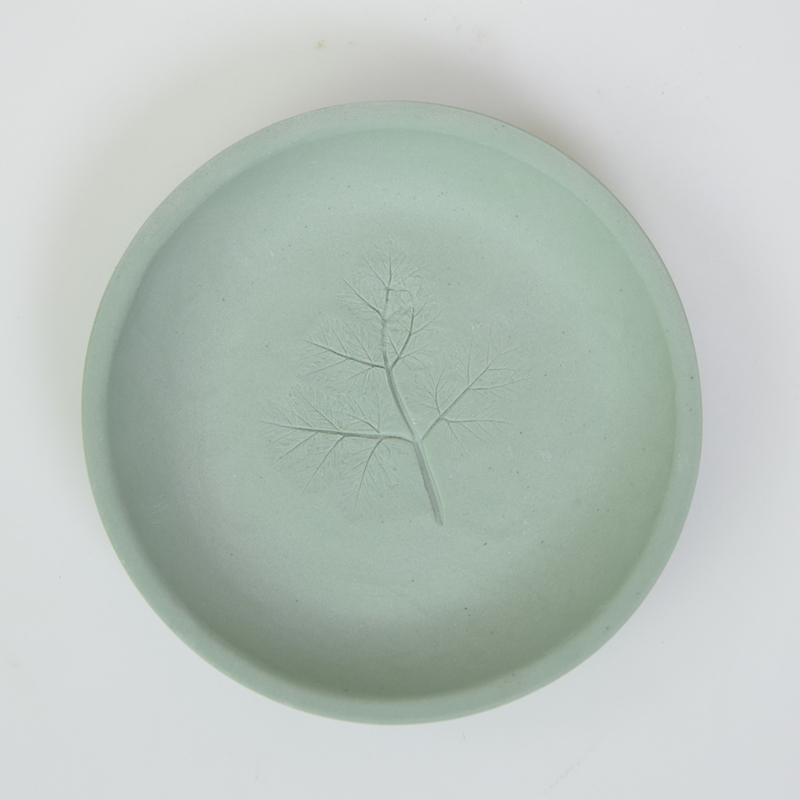 Plantenbord S - Groen 16