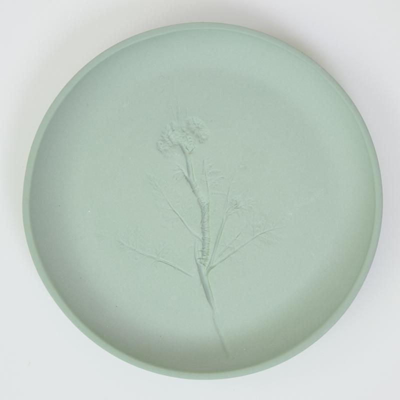 Plantenbord M - Groen 09