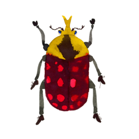 Beetle yellow-black-red