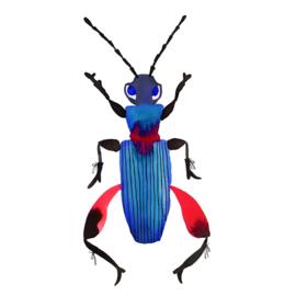 Beetle red pants