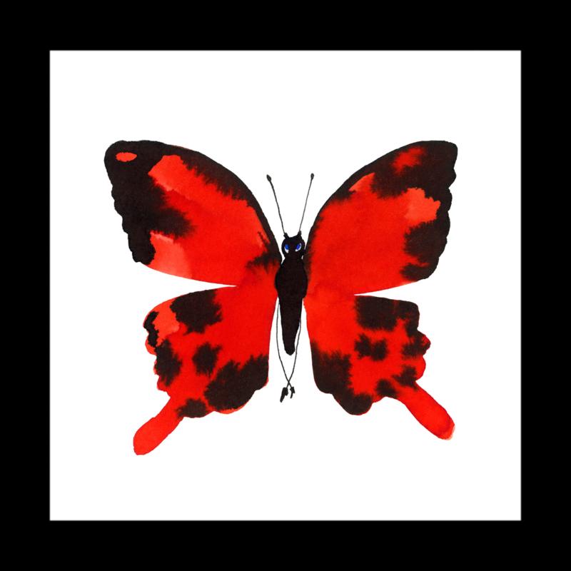 Rode vlinder in boxlijst