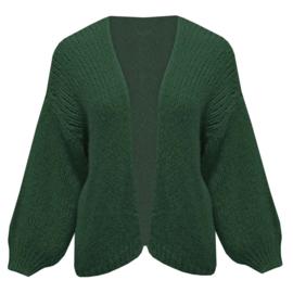 Balloonsleeve knit- Green
