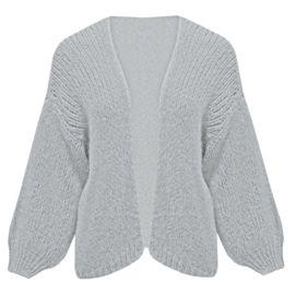 Comfy vest- lichtgrijs