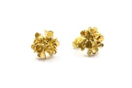 Erwin Borggreve - Oorstekers gouden bloem - 10719