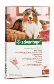 Vlooienmiddel hond Adventage 250 voor honden van 10-25 kg, 4 pipetten voor op de huid uitstekende werking tegen vlooien