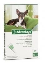 Vlooienmiddel hond Adventage 40 voor honden kleinere dan 4 kg, 4 pipetten voor op de huid, uitstekende werking tegen vlooien