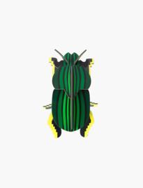 beetle scarabee