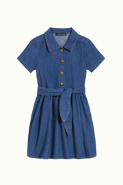 Petit Louie  Olive dress chambray