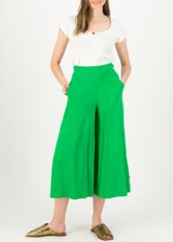 Blutsgeschwister in Fully Bloom Pantalon Joyful Green