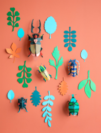 Wall of Curiosities- Beetle Antiquary