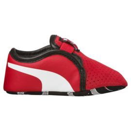 Ferrari Baby schoenen - Puma