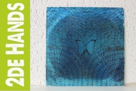 Santana – Borboletta (LP) H10