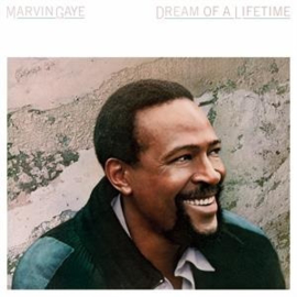 Marvin Gaye - Dream of a Lifetime -Clrd- (LP)