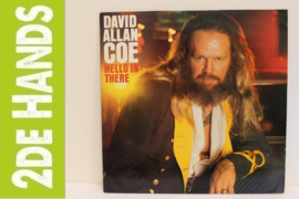 David Allan Coe ‎– Hello In There (LP) G80