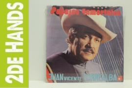 Juan Vicente Torrealba – Pasajes Inmortales (LP) H40