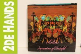 Motions – Impressions Of Wonderful (LP) D20