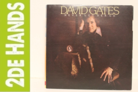 David Gates ‎– Never Let Her Go (LP) b80