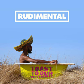 Rudimental ‎– Toast To Our Differences (2LP)