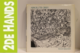 Absolute Grey ‎– What Remains (LP) E80