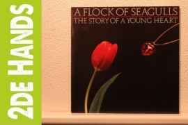 A Flock Of Seagulls - The Story Of A Young Heart (LP) E60