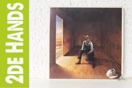 Don McLean ‎– Homeless Brother (LP) D20-C50