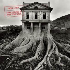 Bon Jovi albums op Vinyl