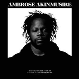 Ambrose Akinmusire - On the Tender Spot of Every Calloused Moment (LP)