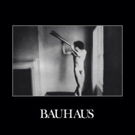 Bauhaus ‎– In The Flat Field (LP)