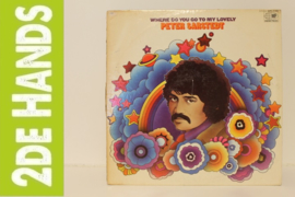 Peter Sarstedt – Where Do You Go To My Lovely (LP) D60