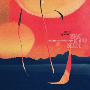 Tom Misch & Yussuf Dayes - What Kinda Music (2LP)