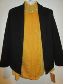 Blazer jasje zwart