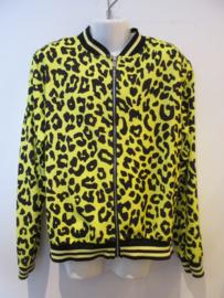 Blouson jasje met rits geel print