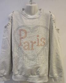 Sweater beige/grijs Paris