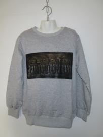 Sweater grijs Star