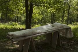 Lijkwade Drents Heideschaap met bamboe