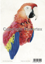 A4 Powerprint paper Parrot