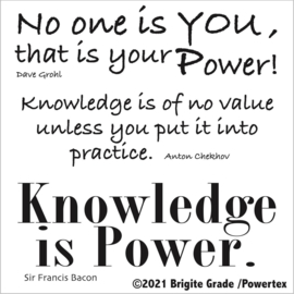 Stencil: Knowledge is Power 15x15 cm