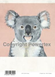 A4 Powerprint paper Koala