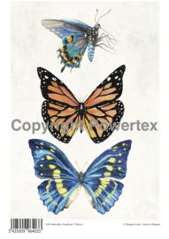 A4 Powerprint paper Butterflies