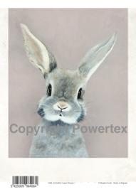 A4 Powerprint paper Rabbit