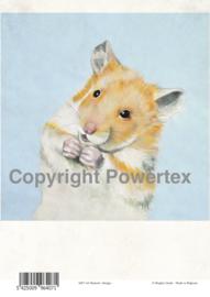 A4 Powerprint paper Hamster
