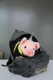 Babe Pig