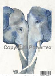A4 Powerprint paper Blue elephants